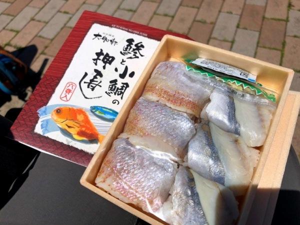 s-201958湘南平ハイク_190508_0015.jpg