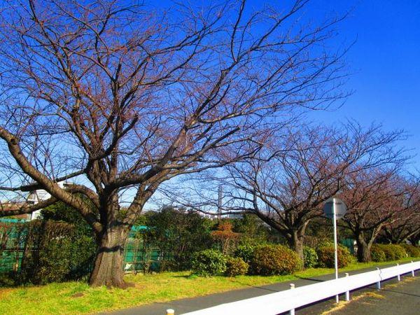 s-IMG_7406.jpg